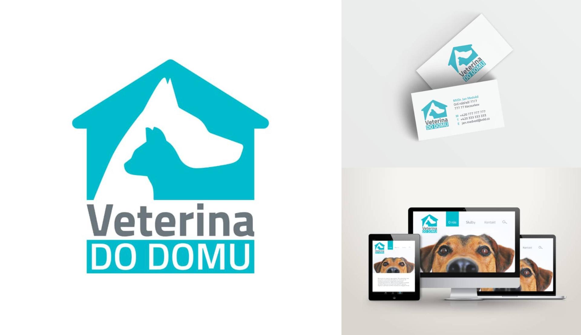 Branding Veterinari I Amplio Studio